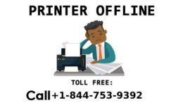 hp LaserJet 1020 printer offline